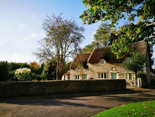 Tree Building Exterior Architecture No People Built Structure Day Outdoors Sky Thatched Cottage Thatched Roof Thatched Cottage Country Cottage Thatched House Pampus Grass Cotswold Stone Cottage Life Cotswold Cottage