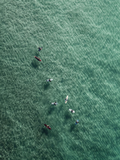 High angle view of a person swimming in sea