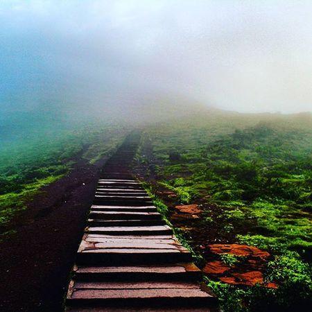 Highwaytoheaven Chickmaglur Mulayangiri Mulayanagiripeak Karnatakatourism Nkmemes Karnataka Steps Canon1200d