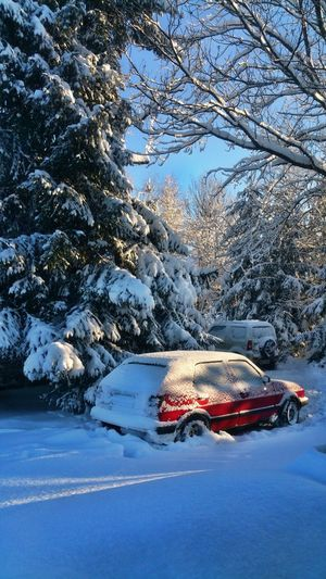 Snow Winter Cold Temperature Tree Car No People Nature Outdoors Transportation Day Beauty In Nature Scenics Sky Golf2 Winter Bieszczady Nature Photography Golfmk2 Poland, Bieszczadymountains Beauty In Nature Golf GTI VW