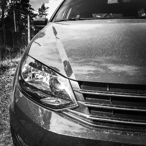 Volkswagen Blackandwhite фольксваген чернобелоефото Polosedan Polo