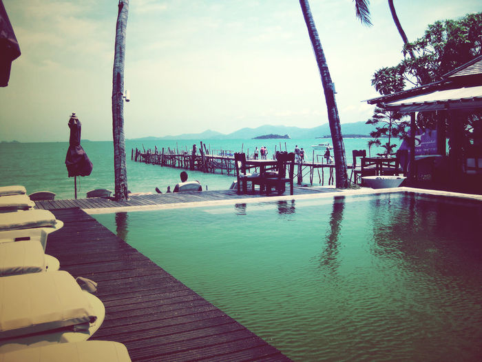 Koh Samui, Thailand ASIA Couple Koh Samui Palm Tree Relaxing Romantic Swimming Thailand Travel Beach Blue Boat Island Landscape Paradise Summer Swimming Pool Tourism Tropical Visit Water Waterfront