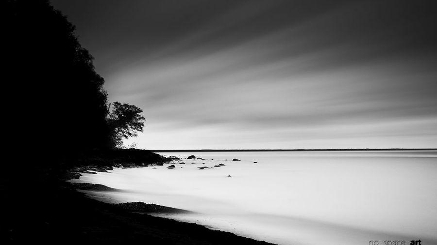 Silhouette trees on calm sea against the sky