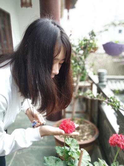 有花堪折直须折,莫待无花空折枝. Plant Flower One Person Flowering Plant Women Hairstyle Nature
