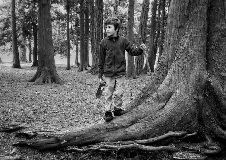 Full length of boy standing by tree on ground