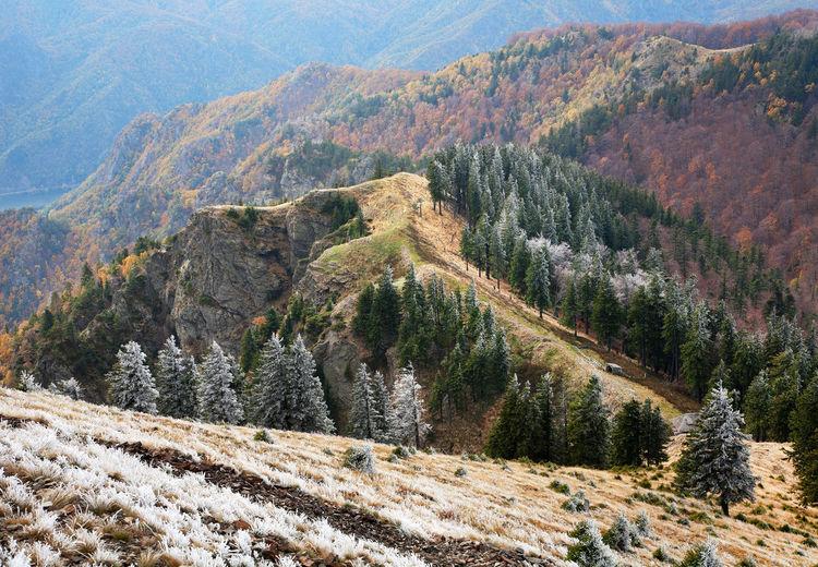 Scenic view of carpathian mountain