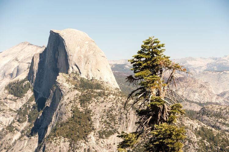 Sky Beauty In Nature Mountain Rock Scenics - Nature Tranquil Scene Nature Tranquility Clear Sky Environment Rock - Object Landscape Tree Non-urban Scene Plant Day Mountain Range No People Mountain Peak Solid Formation Outdoors Eroded Yosemite National Park Halfdome