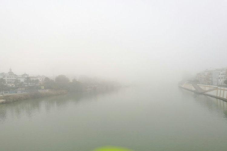 Triana Triana, Puente, Niebla Sevilla Fog Water Reflection Lake Weather Nature Tree Outdoors Sky Day No People