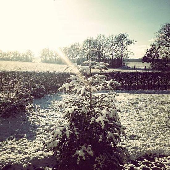 ❄ Jabekojo Snowinholland Cold Farmer4life Farmer365