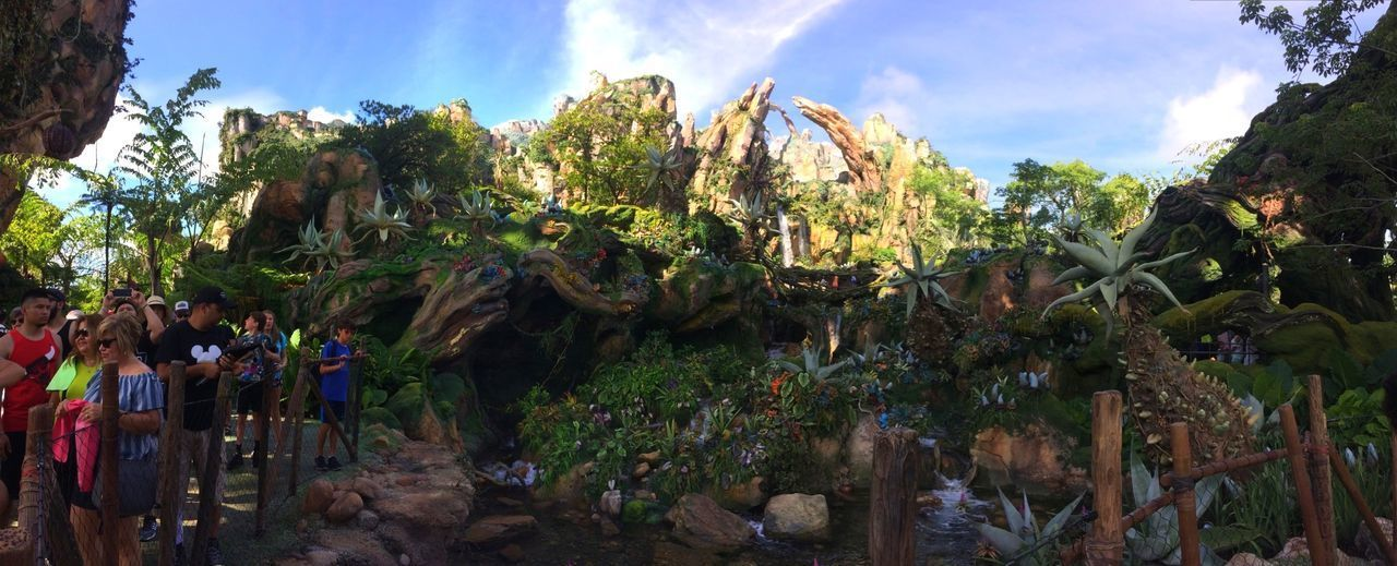 Disney DisneyWorld Animal Kingdom Pandora Tree Large Group Of People Happiestplaceonearth Man Made Structure Vacations Travel Destinations