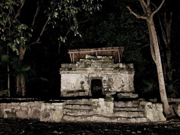 mayan ruin at