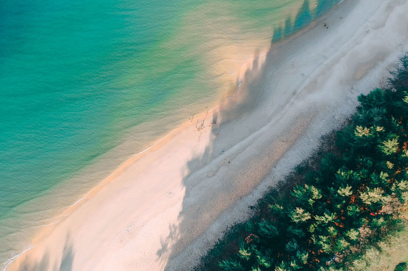 shadow & highlight Beach Land Plant Water Beauty In Nature Sea Nature Sand Scenics - Nature High Angle View Tree No People Day Tranquility Tranquil Scene Motion Idyllic Wave Outdoors