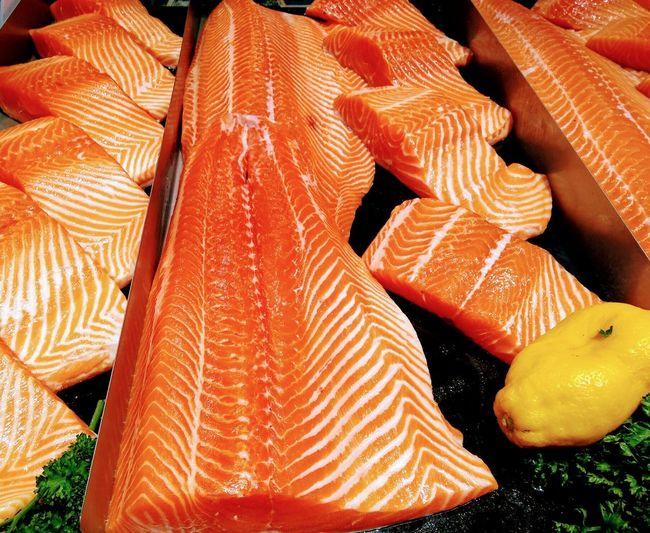 salmon UnderSea