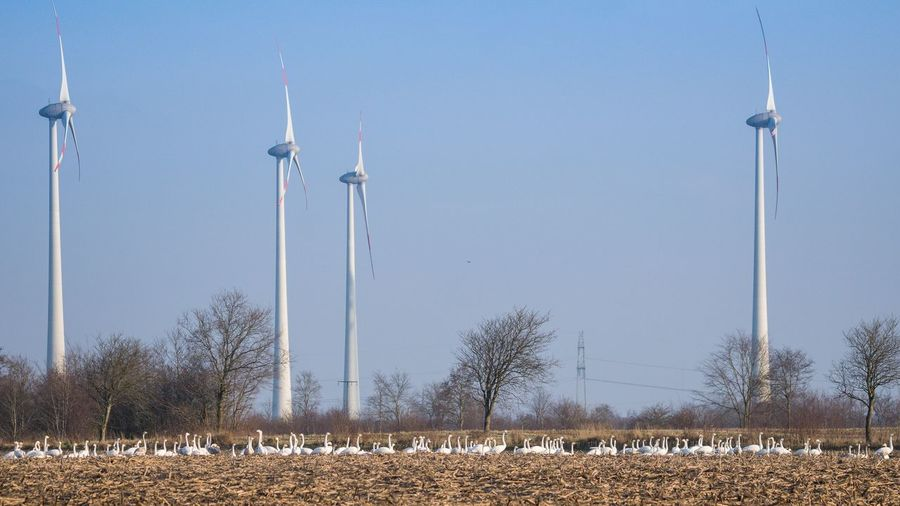 Panoramic view of wind turbines on field against sky