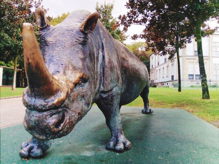Metal Sculpture VitoriaGasteiz Tree Rhinoceros