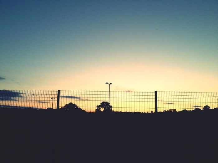 Sunset Sunset Skateboarding Taking Photos