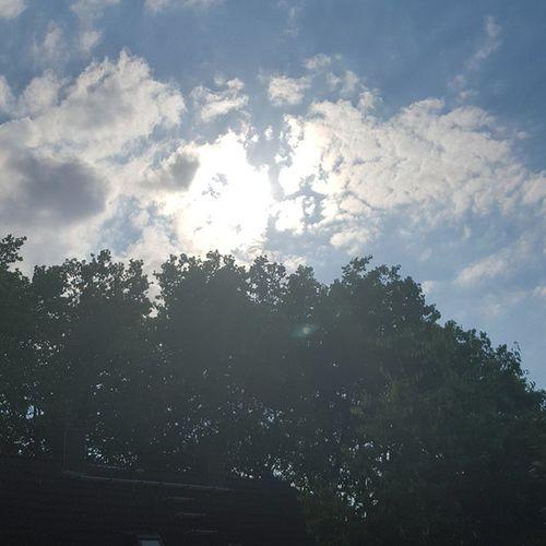 Ich genieße das Wetter auf meinen Balkon 😍 neue Beiträge findet ihr auf meinen Blog, link in der BIO. Summer Sunshine Love Summerfeeling Sun Bestweather Ruhrpottblogger Ruhrpottbloggt Ruhrpott Ruhrgebiet Pottsonne Duisburg Auszeit