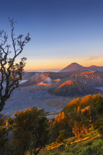 Beautiful sunrise scenery at Mount Bromo, Indonesia Landscape Photography Mountain View Beauty In Nature Bromo Mountain Environment Growth Idyllic Land Landscape Mountain Nature No People Non-urban Scene Orange Color Outdoors Plant Remote Scenics - Nature Semeru Sky Sunset Tranquil Scene Tranquility Tree Wallpaper
