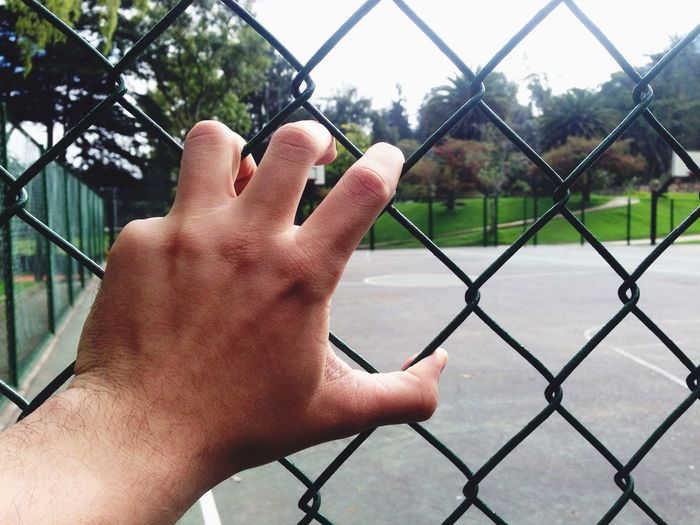 Cropped image of man holding chainlink fence