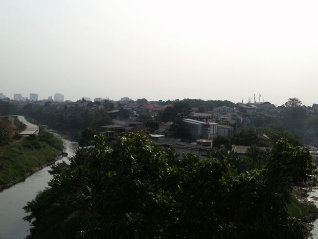view on the banks of the Ciliwung River, Balekambang area Clear Sky Green Color Building City Clear Sky Copy Space Day Growth High Angle View Mode Of Transportation Nature No People Outdoors Plant Scenic View Scenics - Nature Sky Transportation Tree