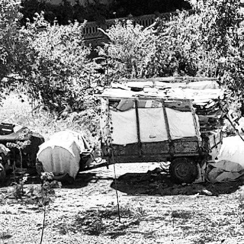 Ge çimini Ka ğıt Toplayarak SA ğlayan bilgili yaşlı bir amcamın traktörü