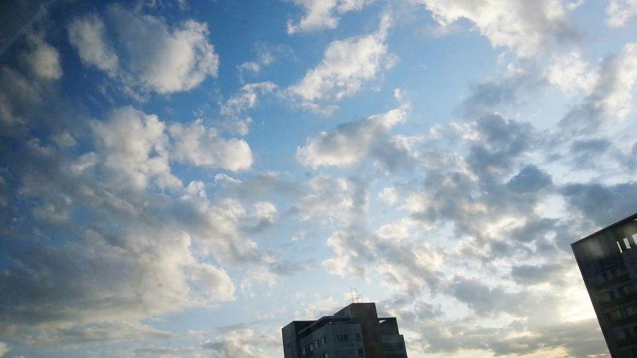 Long time no see EyeEm! Taking Photos Enjoying Life 하늘 Sky Nature Photo♡ Sunset #sun #clouds #skylovers #sky #nature #beautifulinnature #naturalbeauty #photography #landscape