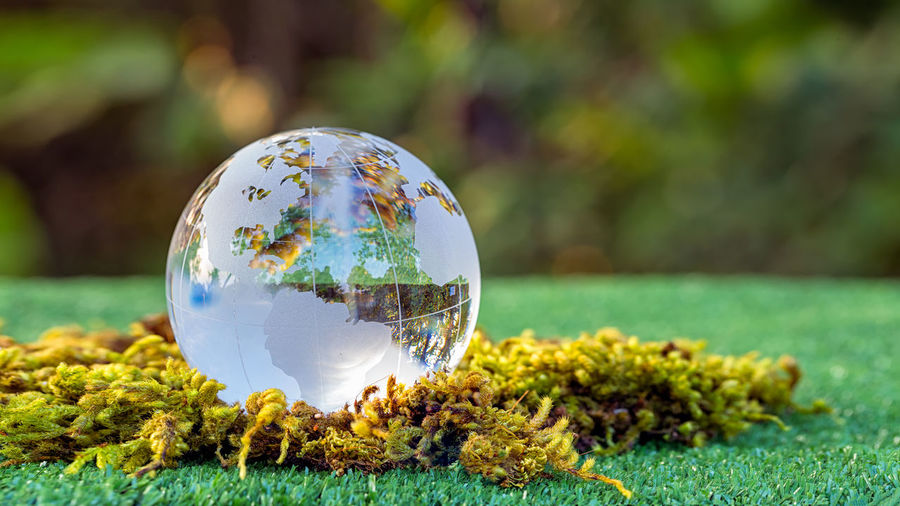 Close-up of glass ball on land against trees