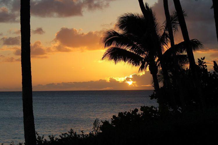 Hawaii Relaxing Beach Maui Hawaii Sunset