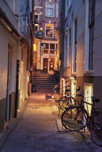 Amsterdam, Dezembro 2009