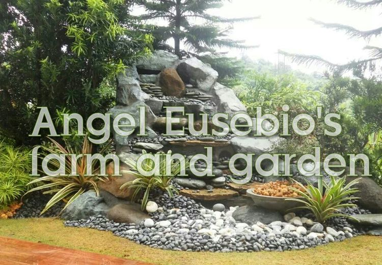 Check This Out Enjoying Life Good Service Originality Satisfaction Quality Landscaping_services EyeEm Best Shots - Landscape