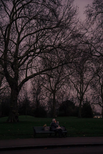 lovers in Hyde Park Streetphotography Street Photography Street Daily Life Lover Lovers Hyde Park London Moody Moody Sky Park Pink Sky Pink Pink Color Couple Kissing