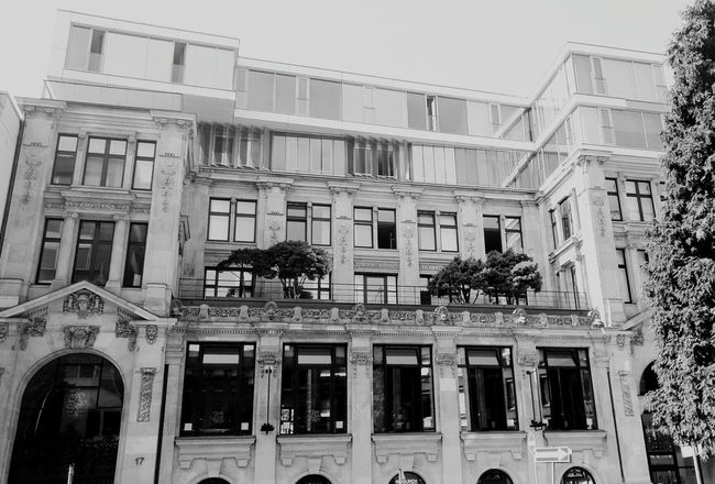 Monochrome Photography Architecture Built Structure City Building Outdoors City Life No People Hamburg City Welovehh Cool Beautiful Symbiotic Relationship Newandold Trees Balcony