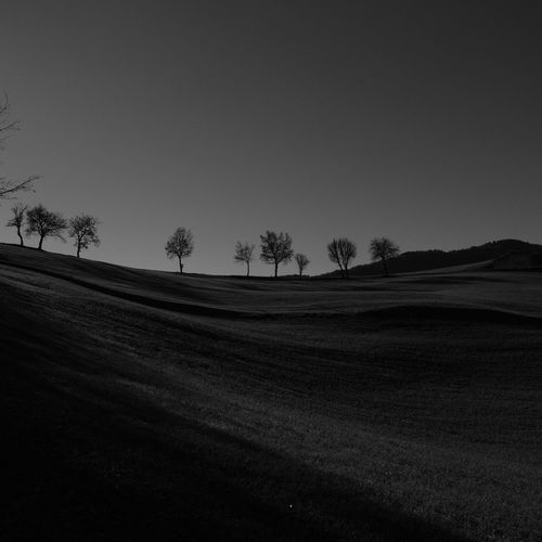 Trees Bnw Bnw_collection Bnw_captures Bnwphotography Sky Tranquil Scene Landscape Tree Rolling Landscape Non-urban Scene Clear Sky Nature Outdoors Land Blackandwhite Black & White