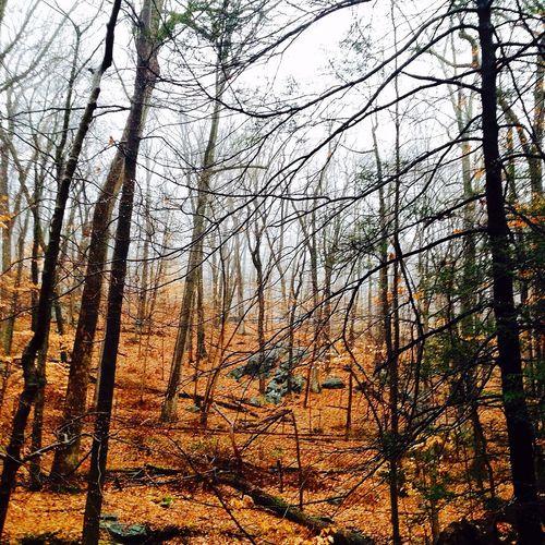 Uphill Trail Running