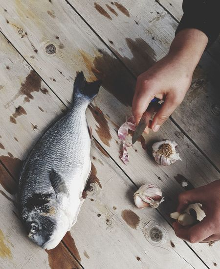 High angle view of hand holding fish on table
