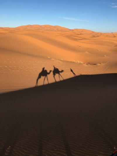 Silhouette people on sand dune in desert against sky