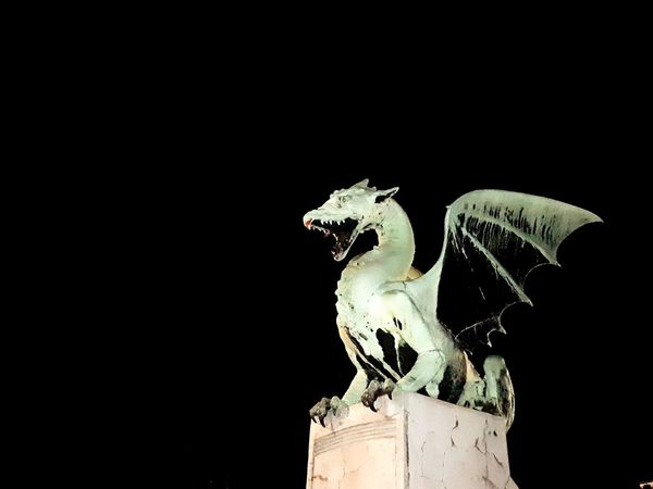 Mystical Dragon Drake  Black Background Nightphotography Green Color Green Black Background Close-up Reptile HUAWEI Photo Award: After Dark