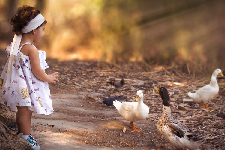 Bird Girls Real People Childhood Animal Themes Cute Outdoors Nature Lifestyles Leisure Activity Togetherness Animals In The Wild Child Day People Pet Portraits