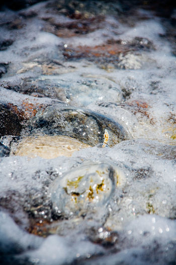 At Ground Level Flowing Pebbles Pebbles And Stones Pebbles And Water Rushing Water Sea Selective Focus Splashing Tidal Tide Water Water Surface Waterfront