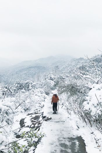 Wildlife Walking Lifestyles Leisure Activity Exploring Climing Hiking Winter Snow Cold Temperature Nature Beauty In Nature Mountain Scenics Outdoors One Person