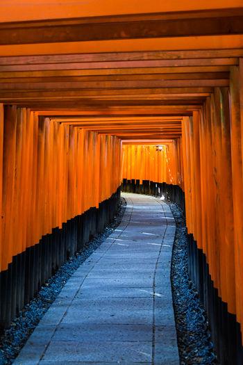 Vermillion gates at the Fushimi Inari Shrine, Kyoto, Japan Buddhist Fushimi Fushimi Inari Taisha Fushimi Inari Taisha Shrine Japan Kyoto, Japan Place Of Worship Shinto Shrine Shrine Shrine Of Japan Shrines & Temples Shrines And Temples TORII Torii Gate Vermillion Buddhism Fushimi Inari Kyoto Fushimi Inari Shrine Kyoto Kyoto Japan Shinto Torii Gates