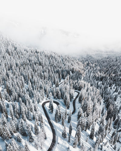 Passo di Giau Snow Winter Cold Temperature Plant Tree Nature Scenics - Nature Landscape Beauty In Nature Environment Tranquility Land Mountain Tranquil Scene No People Day Forest Non-urban Scene High Angle View WoodLand Coniferous Tree Pine Tree Snowcapped Mountain Snowing Pine Woodland The Great Outdoors - 2019 EyeEm Awards