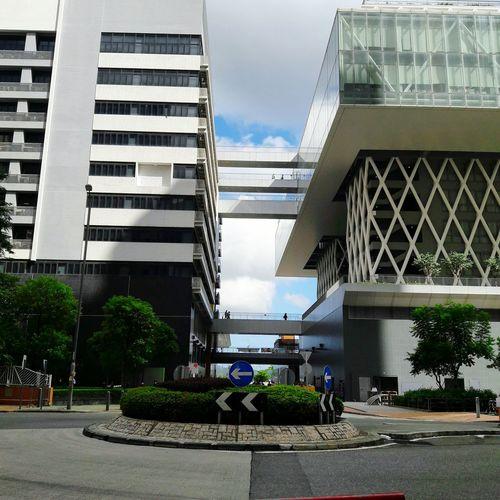 Hong Kong Design Instute Architecture Built Structure Modern Outdoors Tree Sky Education Learning Tiu King Leng