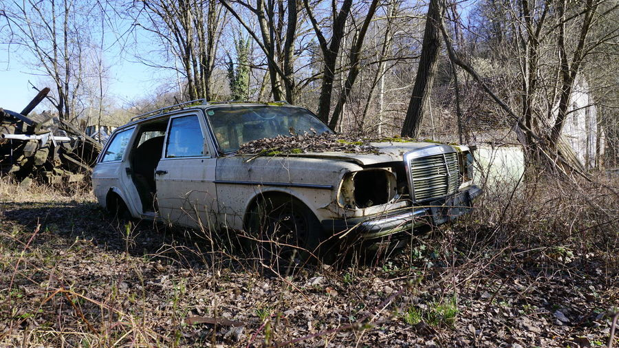 #Fused #NoFilter #mercedesbenz #oldcars #rusty Bare Tree Car Damaged Destruction Mode Of Transport Nature No People Obsolete Old Old Ruin Outdoors Rusty Tree