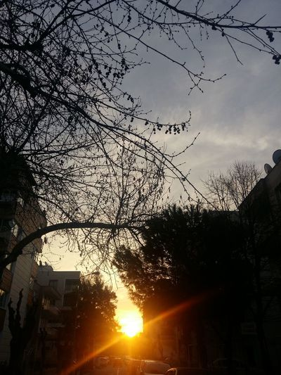 Sun Sky Dream Nature Sunset Day Peace