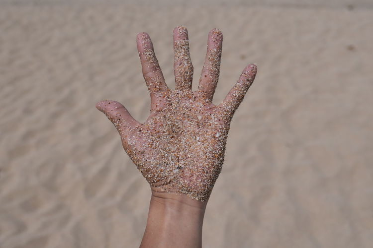 Human Hand Hand Human Body Part One Person Real People Personal Perspective Body Part Finger Human Finger Lifestyles Leisure Activity Sand Day Unrecognizable Person Close-up Focus On Foreground Land Nature Beach Outdoors Starfish  Human Limb Human Body