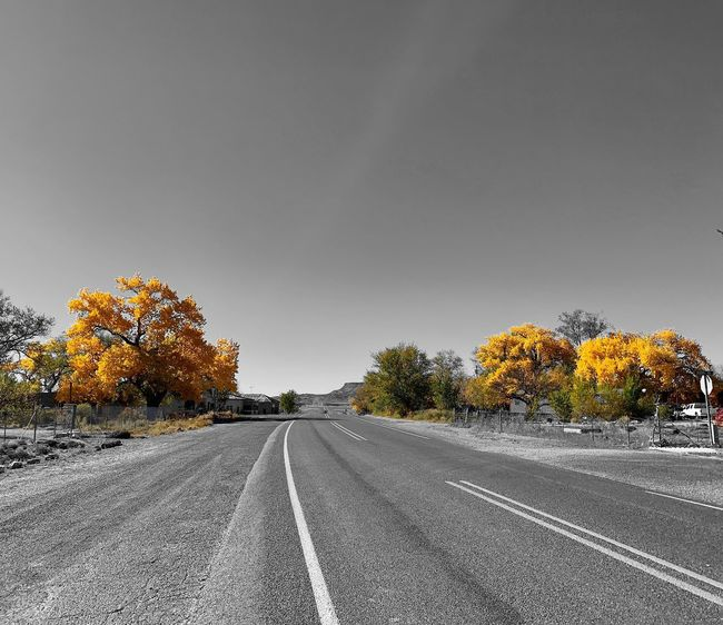 """""""Dejando San Fidel"""" Historic Route 66 West out of the Village Of San Fidel, New Mexico bids adiós. Travel Black And White Photography Black And White Route 66 New Mexico Photography New Mexico Fall Beauty Fall Colors Autumn colors Autumn Selective Color Road The Way Forward No People"""