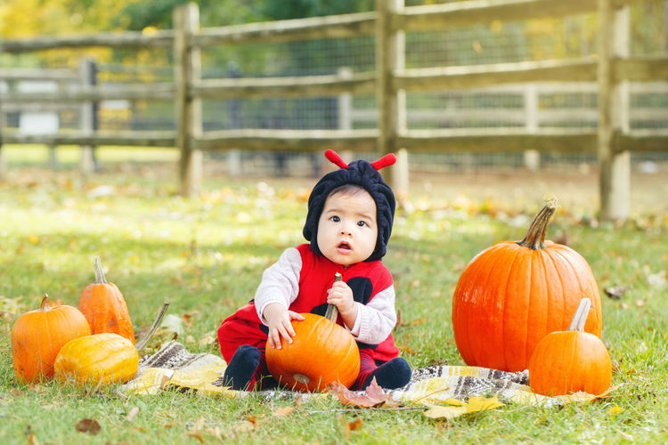 Cute baby girl playing with pumpkins while sitting on land
