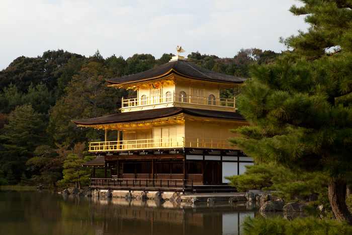 Architecture Buddhist Buddhist Temple Built Structure Day Gold Gold Colored Japan Kinkaku-ji Kyoto No People Outdoors Place Of Worship Sky Temple Tradition Tree Water