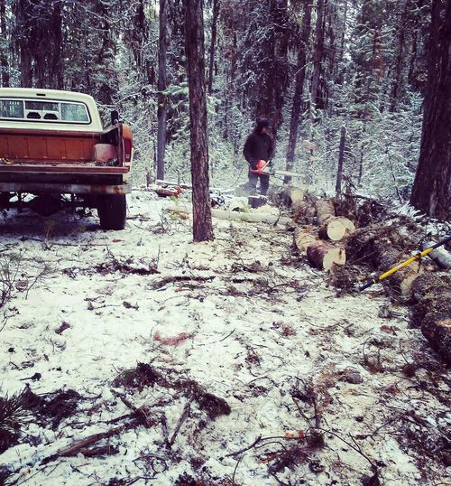 Out on the job. Outdoors One Person Working Man Oregon Woods Fordpickup